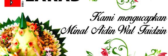 MINAL AIDIN WEB